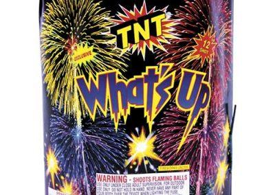 TNT 200 Gram Display Firework